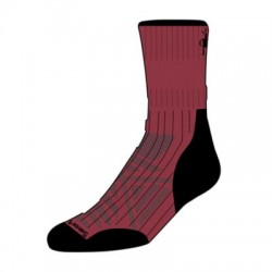 Мъжки чорапи Men's PhD® Run Cold Weather Mid Crew Socks Tibetan Red